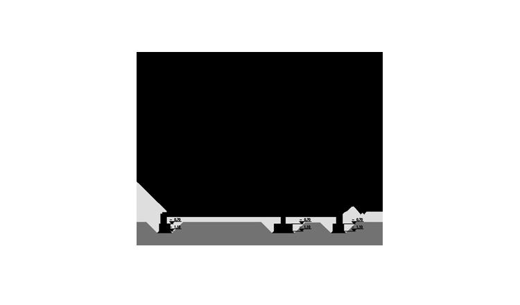 PUCHALSKA-RZUT - przekroj2